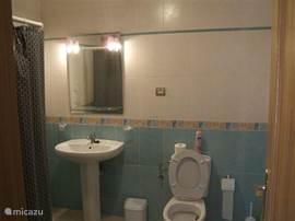 ruime badkamer met douche, wastafel en toilet