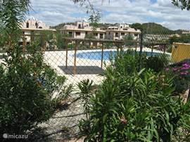 Het zwembad ligt in een mooie groene omgeving.