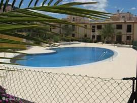 Verwarmd zwembad met vaste schaduwplekken.