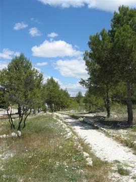 Aangelegde wandelpaden naar en van het dorp Calasparra.