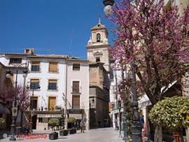 Karakteristiek beeld van het dorp Calasparra.