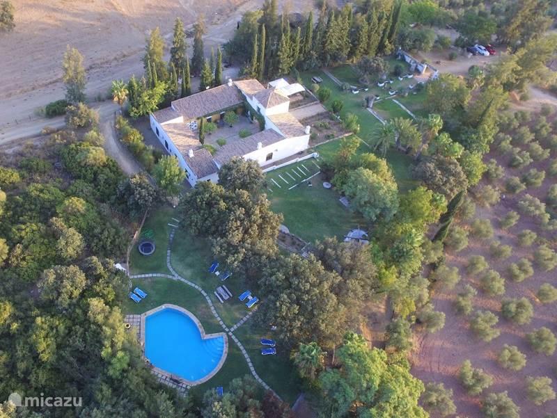 Vakantiehuis Spanje, Andalusië, Puerto Serrano bed & breakfast Finca Maravilla Verde