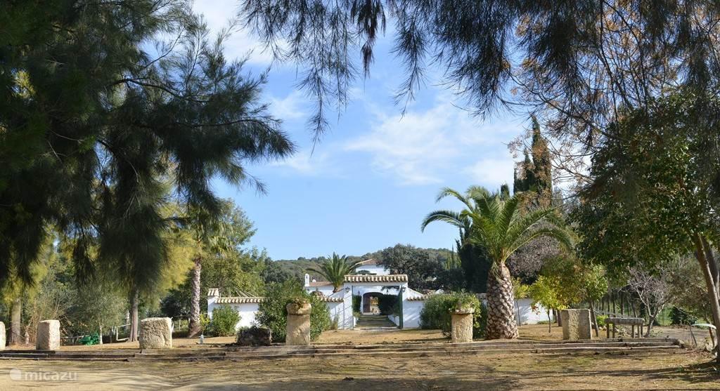 In hartje Andalusië vindt u onze sfeervolle, authentiek ingerichte Spaanse cortijo. De B&B ligt in een ongekend mooie natuur, en heeft een grote koninklijke tuin. Sevilla, Ronda en Jerez zijn slechts een uur rijden.