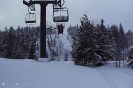Het is genieten tijdens het skiën in het skigebied van Hovfjället. Zeker ben je er van een flink pak sneeuw. Ook in Bränas kan de meer ervaren skiër zich heel goed vermaken. Geen lange wachtijden bij de lift en rustige pistes. Tijdens de lunch kun je genieten in een van stuga's met een kampvuur.