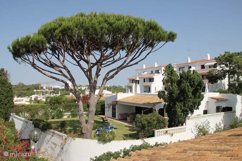 Vakantiehuis Portugal, Algarve, Olhos De Agua Vakantiehuis Casa Dolores