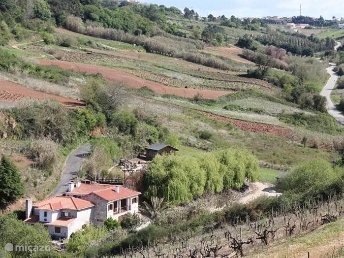 Quinta Japonesa ligt in een prachtige groene vallei. Geniet van de rust en de natuur. De quinta beschikt over een zwembad (7x3m) en een tuin in Japanse stijl op 3600m2. Wij verhuren 2 appartementen, 1 safaritent en 2 villa's. Op 3 minuten afstand een kruidenier, cafe en Restaurant.