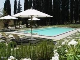 Zwembad 14x6 meter. Diepte 150 cm.   Gescheiden kindergedeelte 50cm diep.  Terrassen rondom met volop ligstoelen.