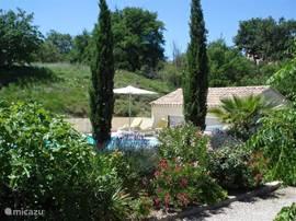 zicht op zwembad vanaf terras