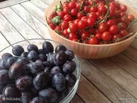 tomaatjes en pruimen uit eigen tuin
