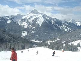 Enorm veel skimogelijkheden