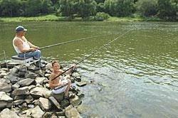 Of vissen in de Moezel