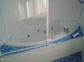 Riante badkamer met whirlpool en separate douche