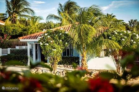 Vacation rental Curaçao, Banda Ariba (East), Jan Thiel villa Villa Blue Curacao