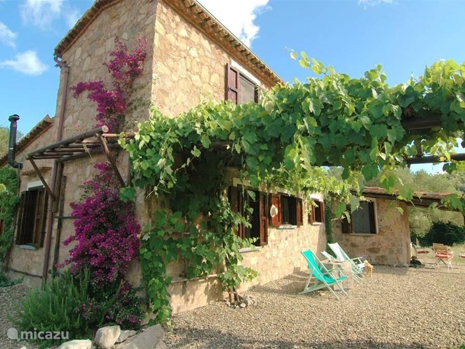 Valle degli Olivi, een authentieke woning, rustig gelegen op 3 autominuten van Roccagloriosa.