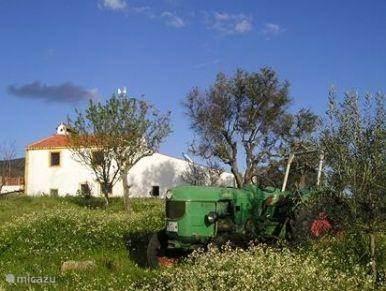 Vakantiehuis Portugal, Alentejo, Castelo De Vide Vakantiehuis Natuurvriendenhuis