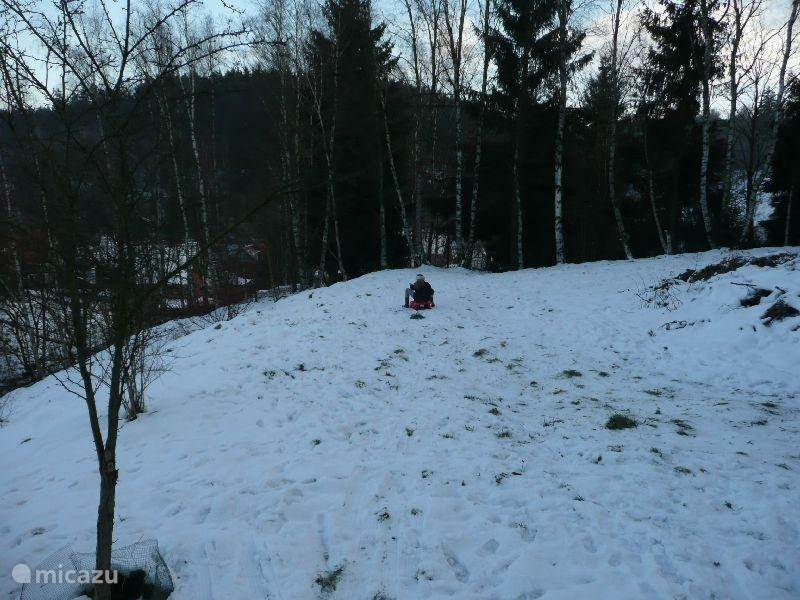 Tobogganing in the garden