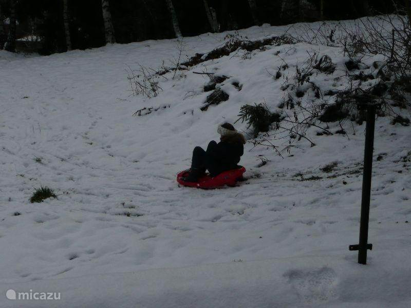 Tobogganing in your own garden (2)