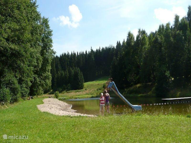 De omgeving - de Harz