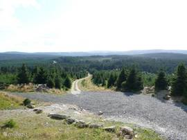 On the way to the Brocken