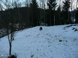 sledding in the garden