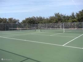 Tennisbanen van Rotonda (gratis te bespelen)