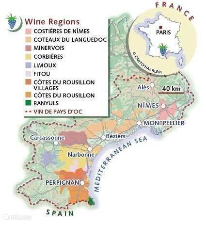 De wijnen uit de omgeving.