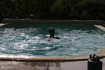 The use of the pool.