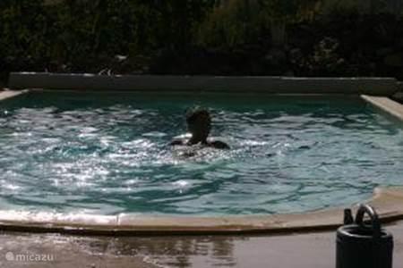 Het gebruik van het zwembad.