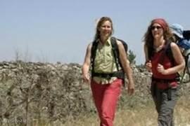 Wandelen in ons wandelparadijs