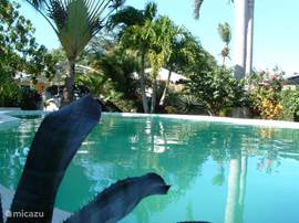 Ruime Villa gelegen in een prachtige tropische tuin met eigen zwembad en jacuzzi, op 200 m van het privestrand van de villawijk.