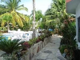 Aanzicht tuin vanuit huis