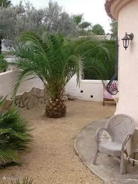 In de tuin staan diverse palmbomen, jasmijn planten en andere mediterrane planten voor een optimale sfeer