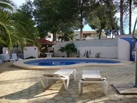 Heerlijke zwembad met buitendouche en ruim zonneterras met ligbedden en parasols.
