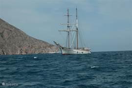 De haven wordt aangedaan door diverse internationale schepen. Dit schip kwam van de Canarische Eilanden.