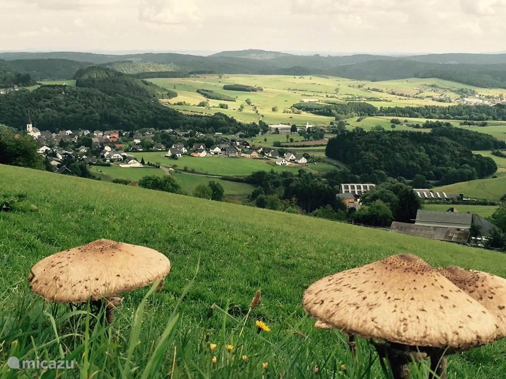 Ook in de herfst is het prachtig in Dudinghausen