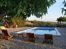 Na een warme dag kunt u na 16.00 h heerlijk zwemmen in ons riante zwembad.