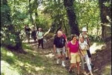 Geplastificeerde wandelroutes aanwezig
