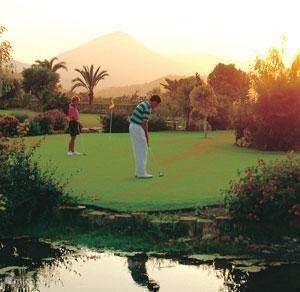Golfbanen in de buurt!
