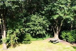 Tuin aan de achterzijde