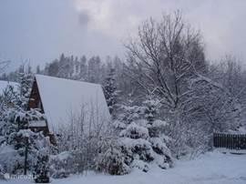 De buren na een sneeuwbui