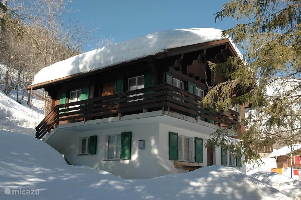 Vakantiehuis Zwitserland, Wallis, Fiesch chalet windhuebi