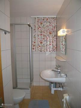 Doucheruimte met wastafel en toilet op benedenverdieping