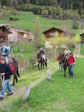Paardentrektocht vanuit het authentieke dorp Ernen