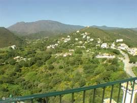 Forest Hills, groen en rustig