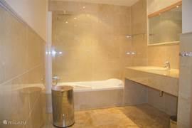Grote badkamer bad/douche, wastafel