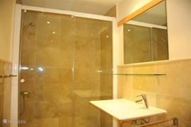 Kleine badkamer, douche, wastafel en toilet