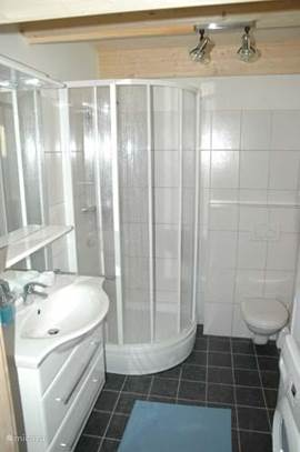 Downstairs bathroom with shower and washbasin