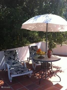De ligstoelen bij het zwembad bieden het gewenste comfort hetzij in de zon of in de schaduw van de Algarobbo-boom.
