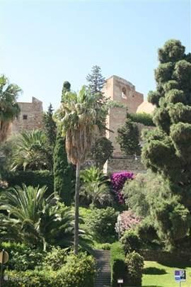 Een uur rijden van onze woning, ligt de havenstad Malaga. Rijk aan cultuur (de geboortestad van Picasso), diverse monumenten zoals een kathedraal, het Arabisch fort , het kasteel en veel Moorse invloeden, talloze bars, restaurants en een bruisend nachtleven.