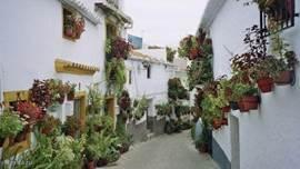 Canillas de Aceituno ligt op de top van een berg en heeft talloze kleine steile steegjes en straatjes, die je nieuwsgierigheid wekken.